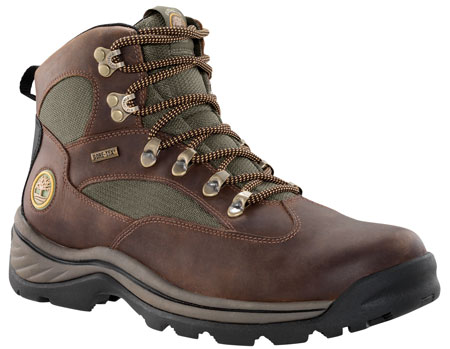 Chocorua Trail Brown/Green Wandelschoen Heren