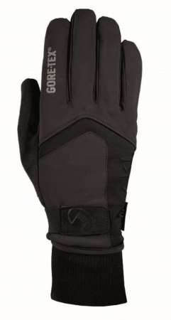picture Rigoli GTX Handschoenen Zwart